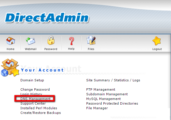 DNS Management in DirectAdmin